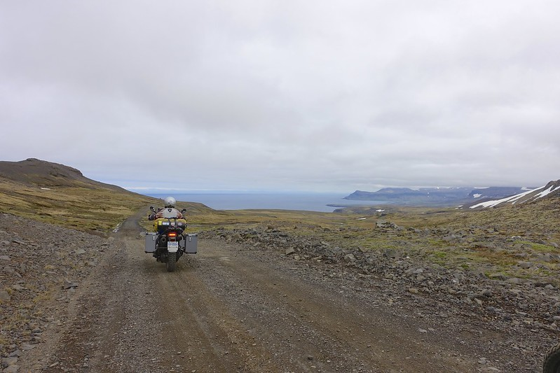 north to puffins 19