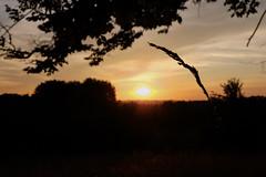 Coucher de soleil #8 - Photo of Clermont-d'Excideuil