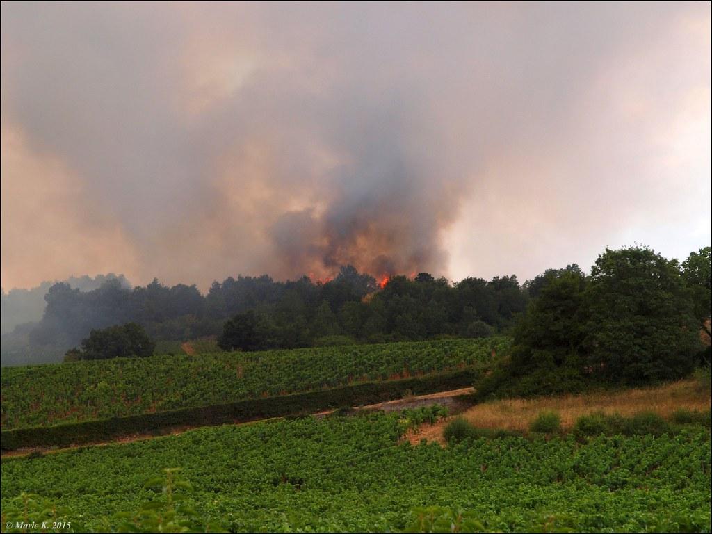 Incendie de forêt  19919313235_ef4415c781_b