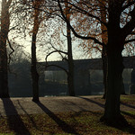 Shadows at Avenham Park, Preston
