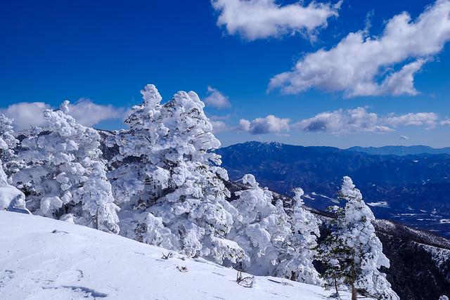 樹氷の向こうに秩父の山々