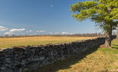 Stone Wall at the State Arboretum of Virginia
