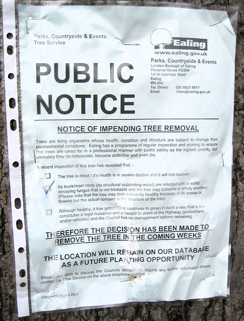 Tree - death sentence | Ths notice condemns a diseased tree … | Flickr
