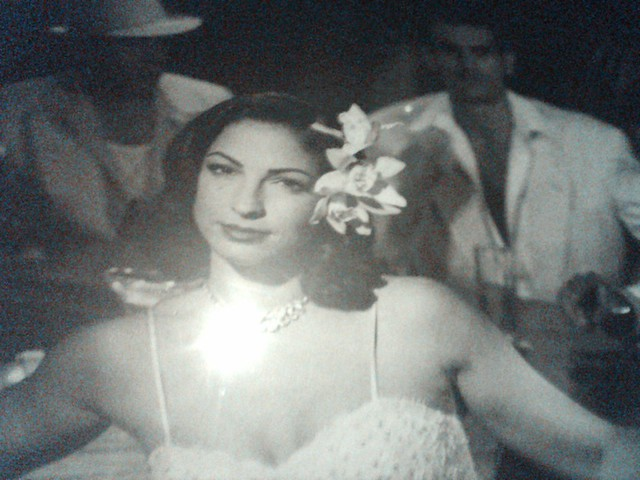 Header of Gloria Estefan