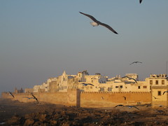 Essaouira Walls at Sunset