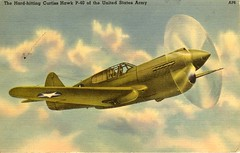 supermarine spitfire(0.0), lavochkin la-5(0.0), focke-wulf fw 190(0.0), aviation(1.0), airplane(1.0), propeller driven aircraft(1.0), wing(1.0), vehicle(1.0), fighter aircraft(1.0), curtiss p-40 warhawk(1.0),
