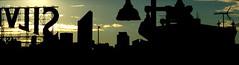 silvercup skyline