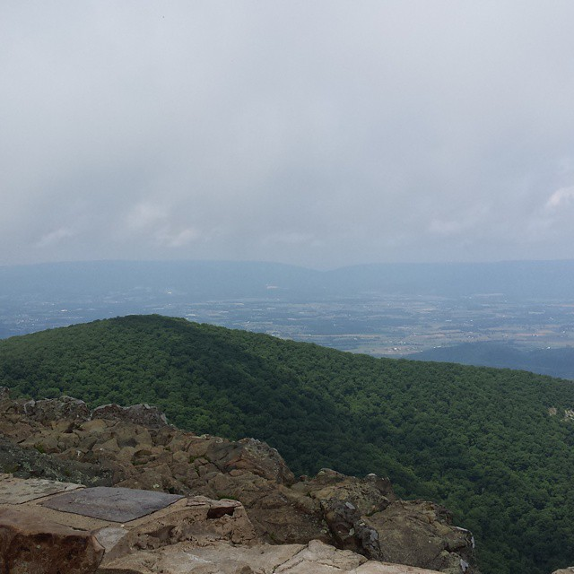 View from #lowerhawksbill #hiking #shenandoahnationalpark