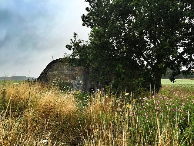 Búnker alemán cerca de Fromelles (I Guerra Mundial)