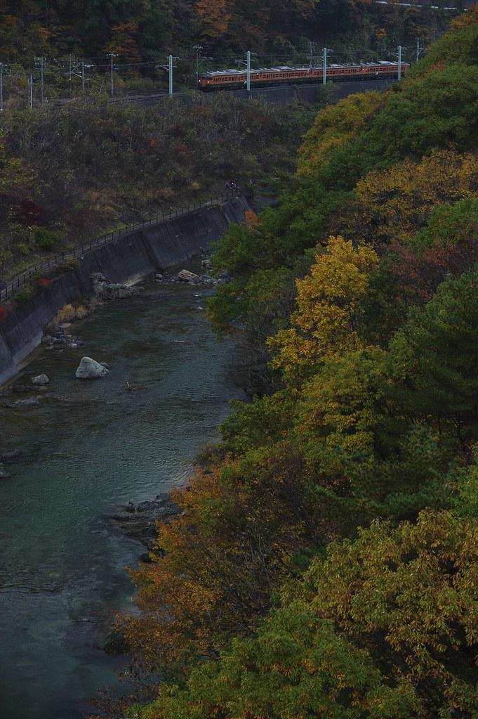 色づく諏訪峡と115系