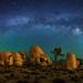 Joshua Tree and Milky Way Panorama by Wayne Pinkston
