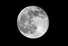 Blue Moon, 7-31-2015