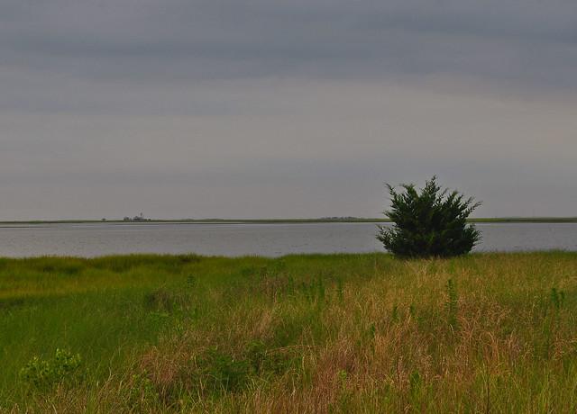 Metompkin Bay (3)