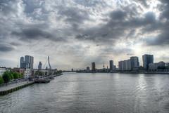 De Nieuwe Maas
