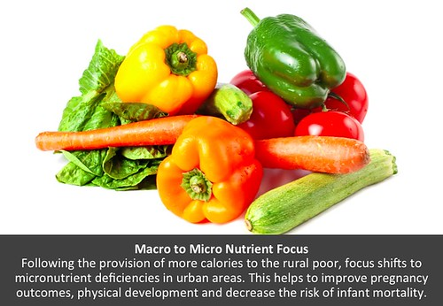 Macro to Micro Nutrient Focus