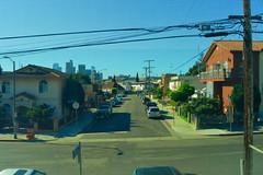 LA Landscape 1