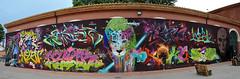 MOS-France 2015. Perpignan. Mur 3