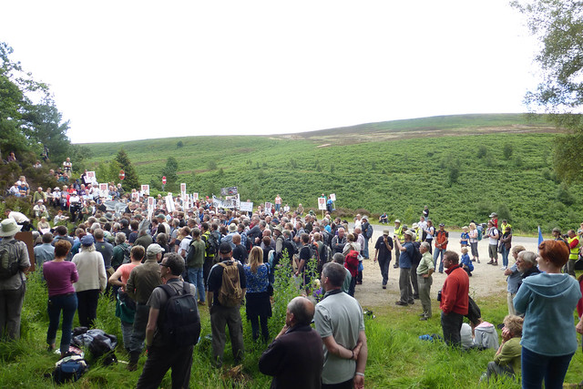 Hen Harrier Day 2015