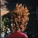 Oriana's Hair