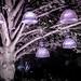 The Tree Of Lights by Sean Batten