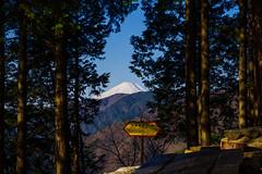 富士山@堀山の家