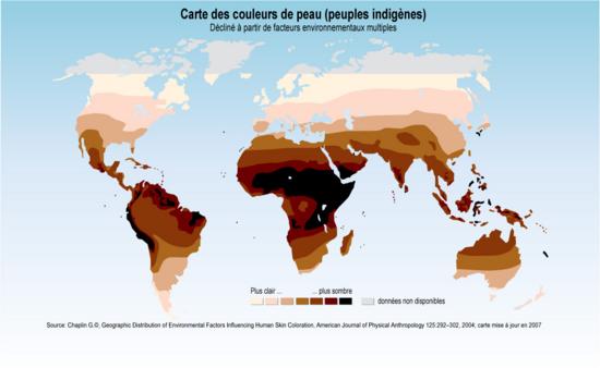 Carte Des Couleurs De Peau Peuples Indigènes Grid Arendal