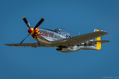 monoplane, aviation, airplane, propeller driven aircraft, wing, vehicle, north american p-51 mustang, air racing, general aviation, fighter aircraft,