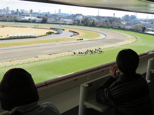中山競馬場のゴンドラ指定席からの眺め