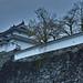 2015.06.19-01 Japanese Castle (Sigma DP2Merrill)