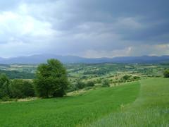peste dealuri/over hills