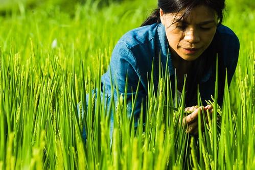 電影《太陽的孩子》藉由 林秀玲訴說一個土地永續的夢想。(圖片來源:一期一會影像製作有限公司)
