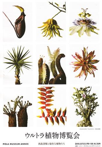 ■ウルトラ植物博覧会■西畠清順と愉快な植物たち■