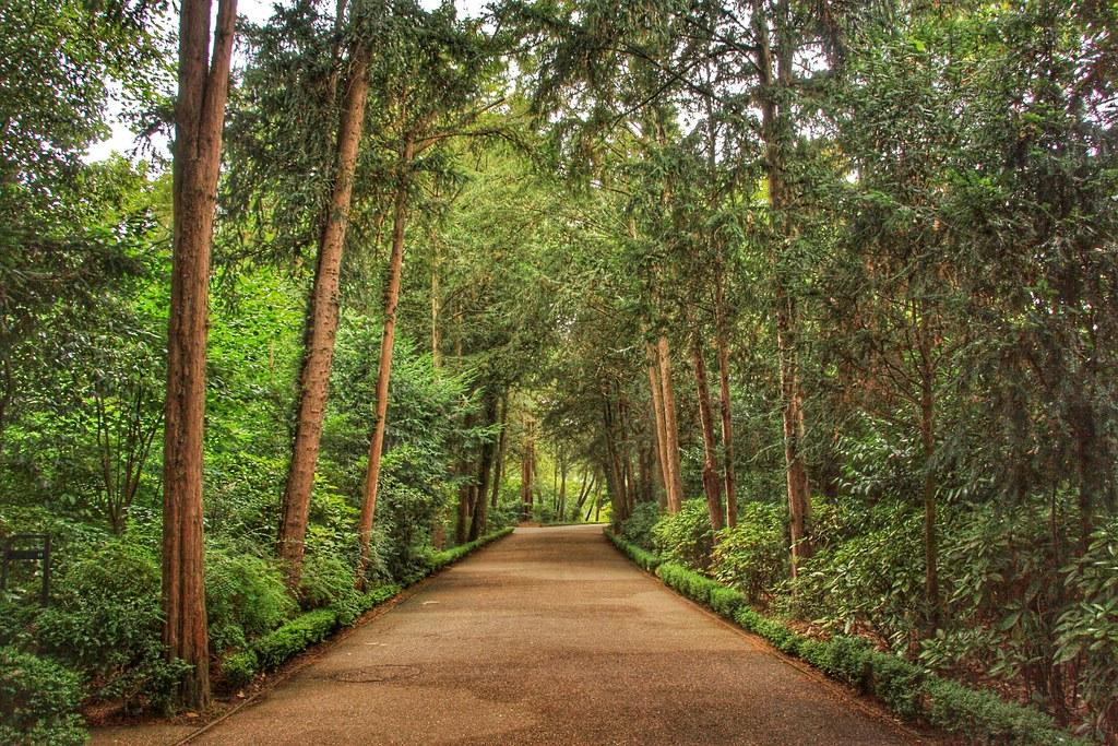 Parc de Bagatelle, Paris, Paris Park, Things to do Paris,