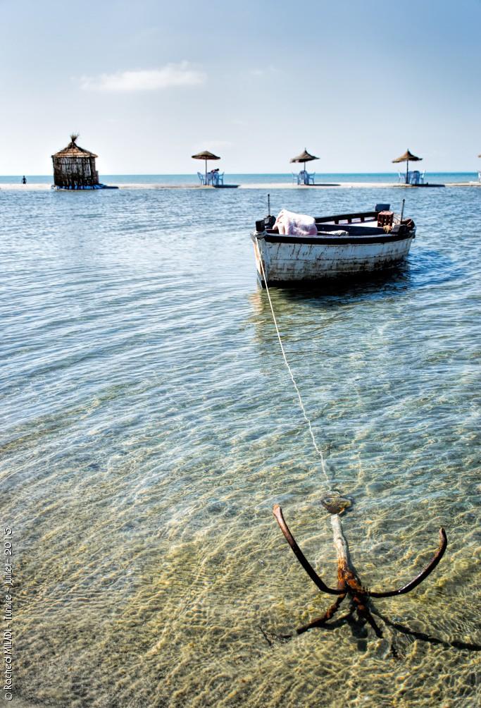 Elle attend sagement les pêcheurs