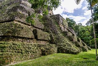 Immagine di Tikal vicino a Tikal. cstevendosremedios tikal petén guatemala gt