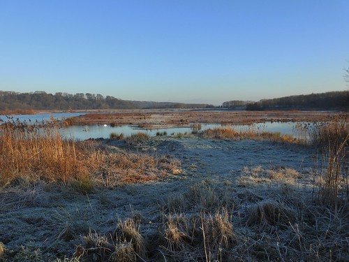 , A Cold Early Winters Morning at Brockholes Nature Reserve near Preston, Lancashire, England – December 2016, Family Blog 2020, Family Blog 2020