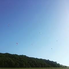 Ça s'envoit en l'air en haut du #coteau #audessusdemisy #Champagne #Parapente #effervescence #marnevalley