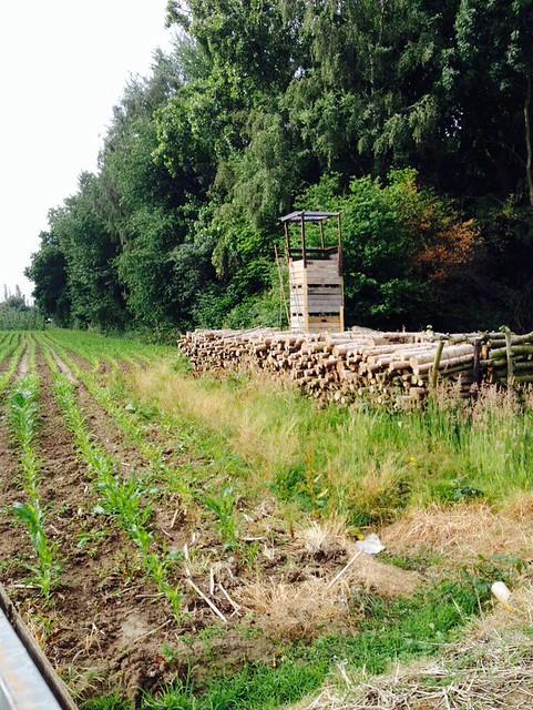 Uitstap K Tine @ boerderij