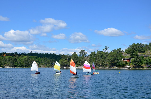 Sailing race for the grown-ups