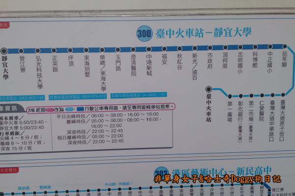 台中秋紅谷29