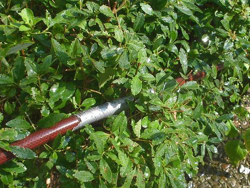 Geflickter Gartenschlauch