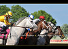 Start of the GIII Pegasus S. at Monmouth Park, won by Mr. Jordan