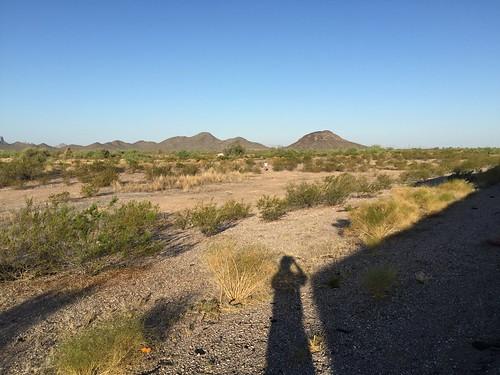 traffic desert