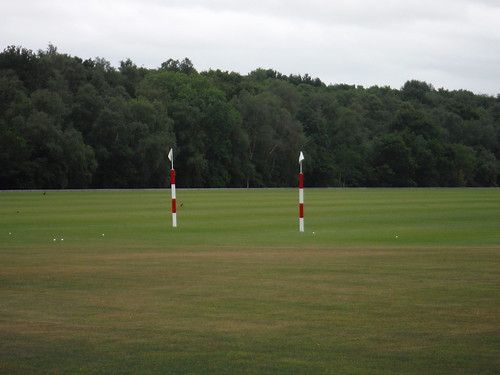 Polo Field near Littleworth Common
