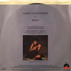 ANITA BAKER:CAUGHT UP IN THE RAPTURE(JACKET B)