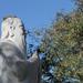 Confúcio, Statue of philosopher / estátua do filósofo BRAZIL-SP-(OSASCO LIBRARY)