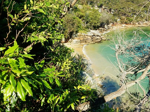 Castle rock cove - Sydney