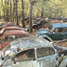 VW Graveyard by Jonnie Lynn Lace