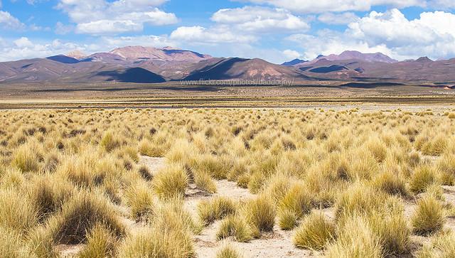 Bolivia Altiplano Scenery