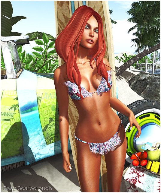 Hair Fair - Blueberry 1